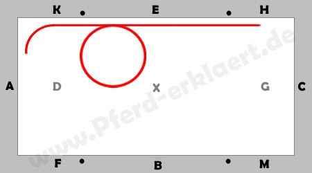 E- und A-Dressur: 10 Meter Volte