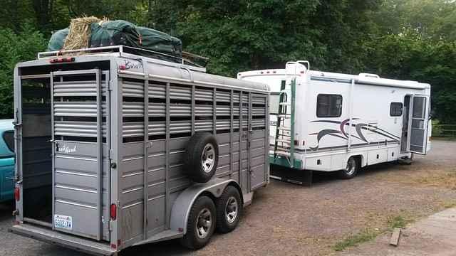 Im Pferde-Transportanhänger gilt: Einstreu nicht vergessen!