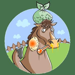 Krankes Pferd - immer eine Ausnahmesituation für Mensch und Tier
