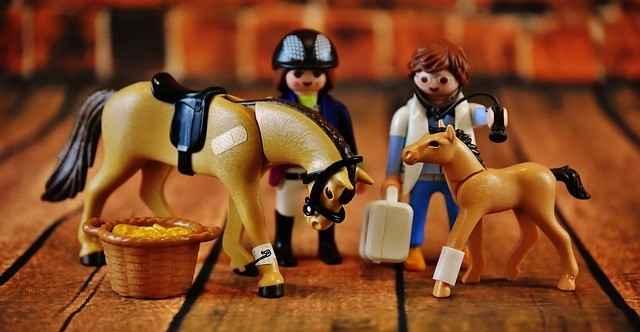 Tierarztbesuch - mit der richtigen Vorbereitung ein Kinderspiel